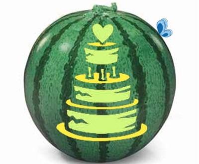 عکس الگوی کیک عروسی روی هندوانه