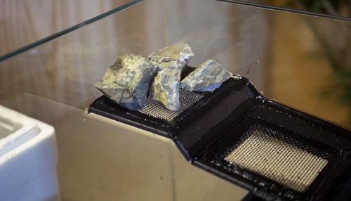 عکس چسباندن سنگ به تراریوم آبی