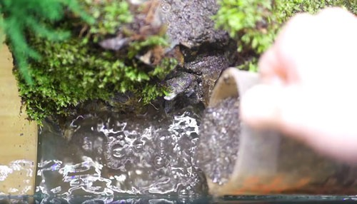 عکس ریختن شن در تراریوم آبی