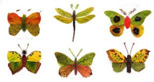 عکس ساخت کاردستی با برگ پاییزی