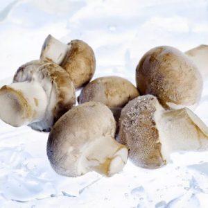 عکس روش فریز کردن قارچ