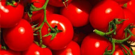 علت رنگ قرمز گوجه فرنگی چه ماده ای است