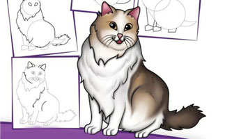 عکس الگوی نقاشی گربه